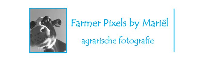 Farmer Pixels by Mariel